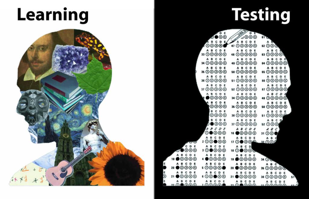 standardized-test 6